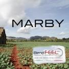 BLENDFEEL MARBY